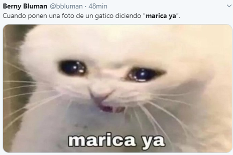 Meme De Marica Ya Plantilla Del Meme Del Gato Llorando
